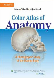 Rohen's Color Atlas of Anatomy: A Photographic Study of the Human Body