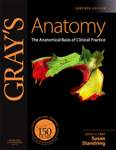 Gray's Anatomy Atlas